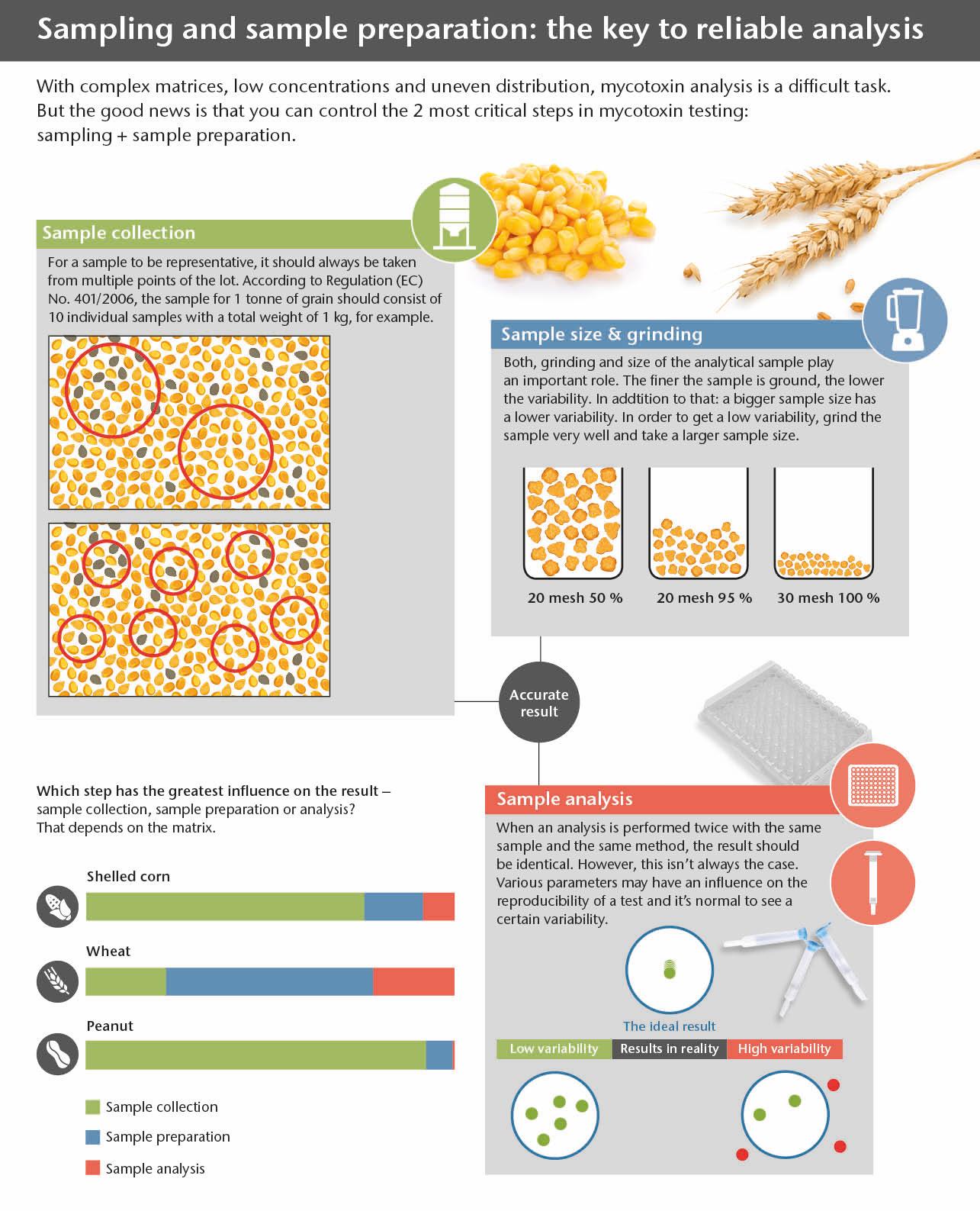 infographic mycotoxin sampling