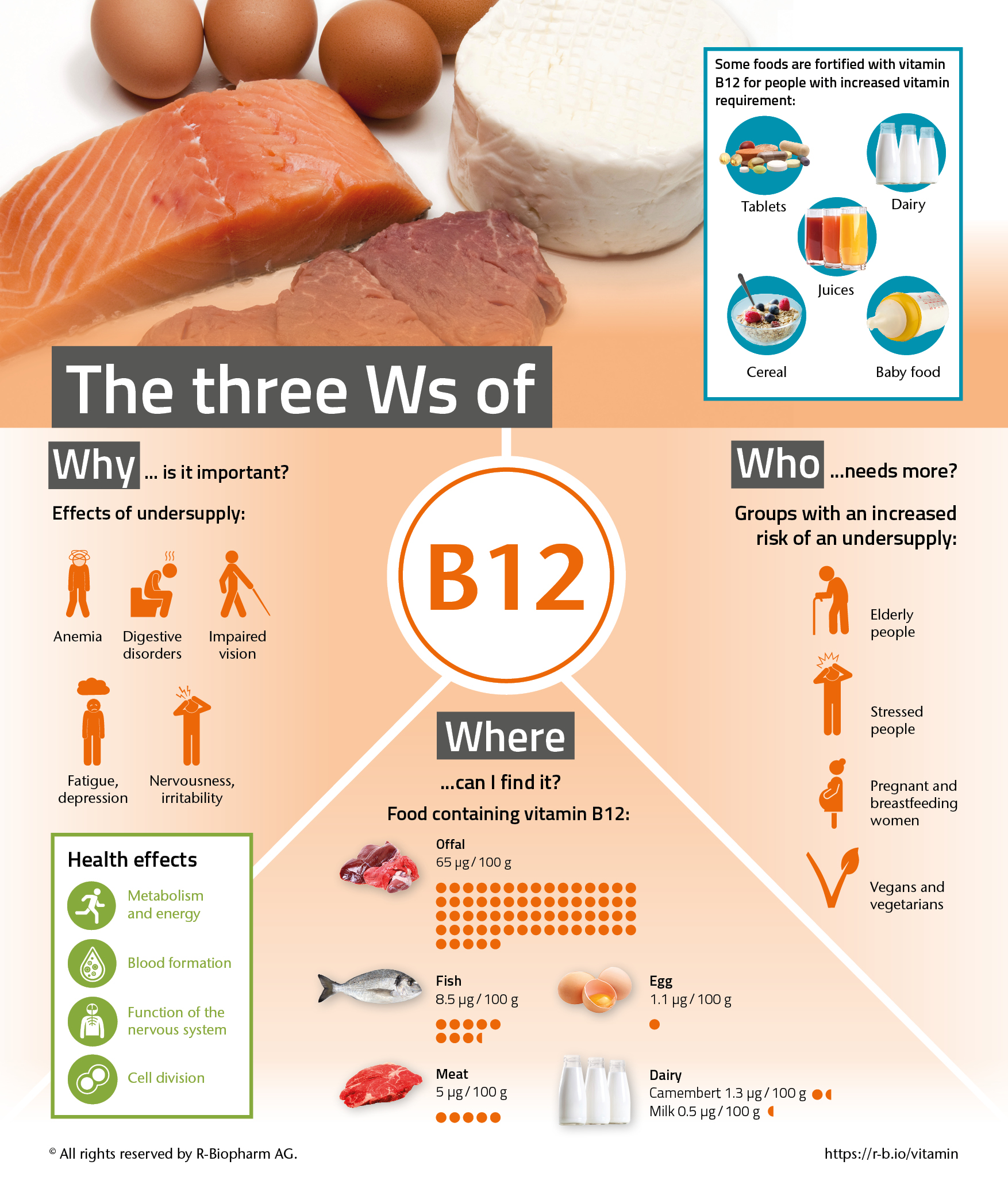 infografik_vitaminreihe_b12